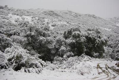 2/10/10 Pine Valley Snow